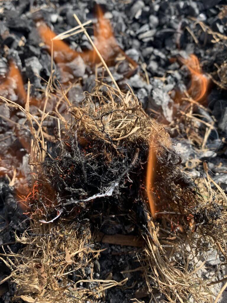 Glød til flammer