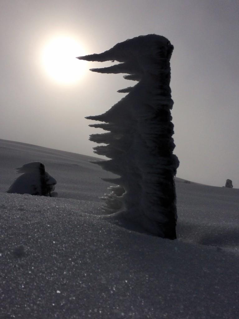 Snelandskab Lifjell